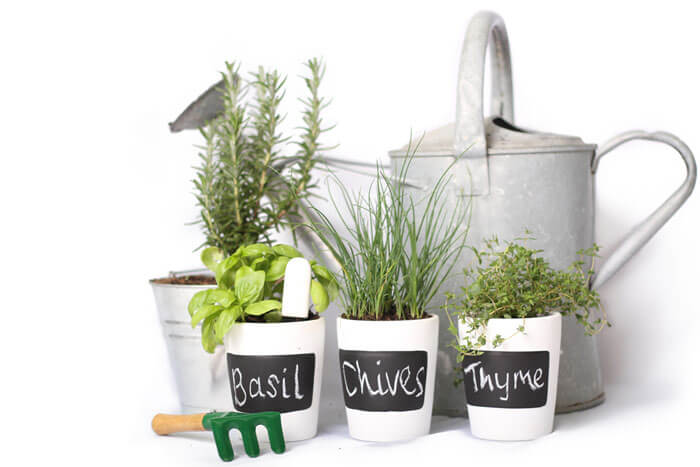 Step 3 Herbs Garden Smart Monitor Geek